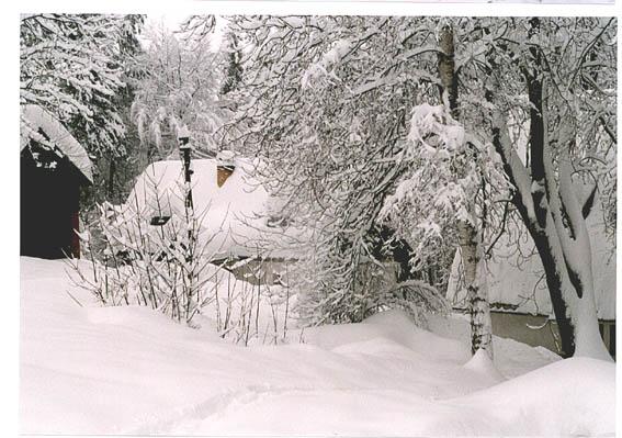 Zima 2006 sousedi