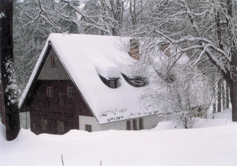 Zima 2006